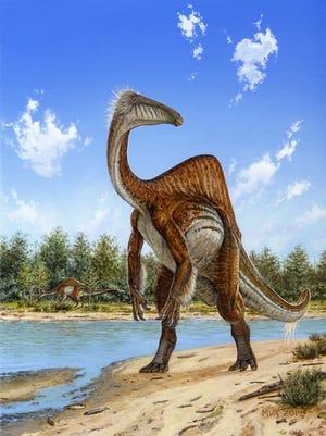 A recreation of the giant-sized dinosaur Deinocheirus