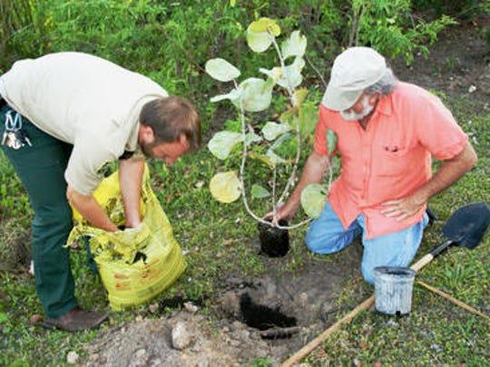Master Gardener and Florida Yards and Neighborhoods
