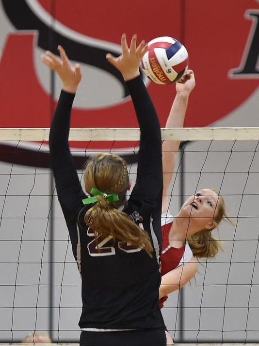DCA 1012 sevastopol volleyball 2