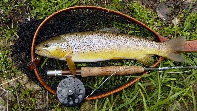 TLA Outdoors fly-fishing report