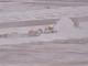 Snow removal at Memphis International Airport Tuesday.