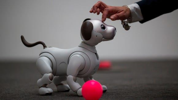 This is the newest generation of the Aibo robot, which