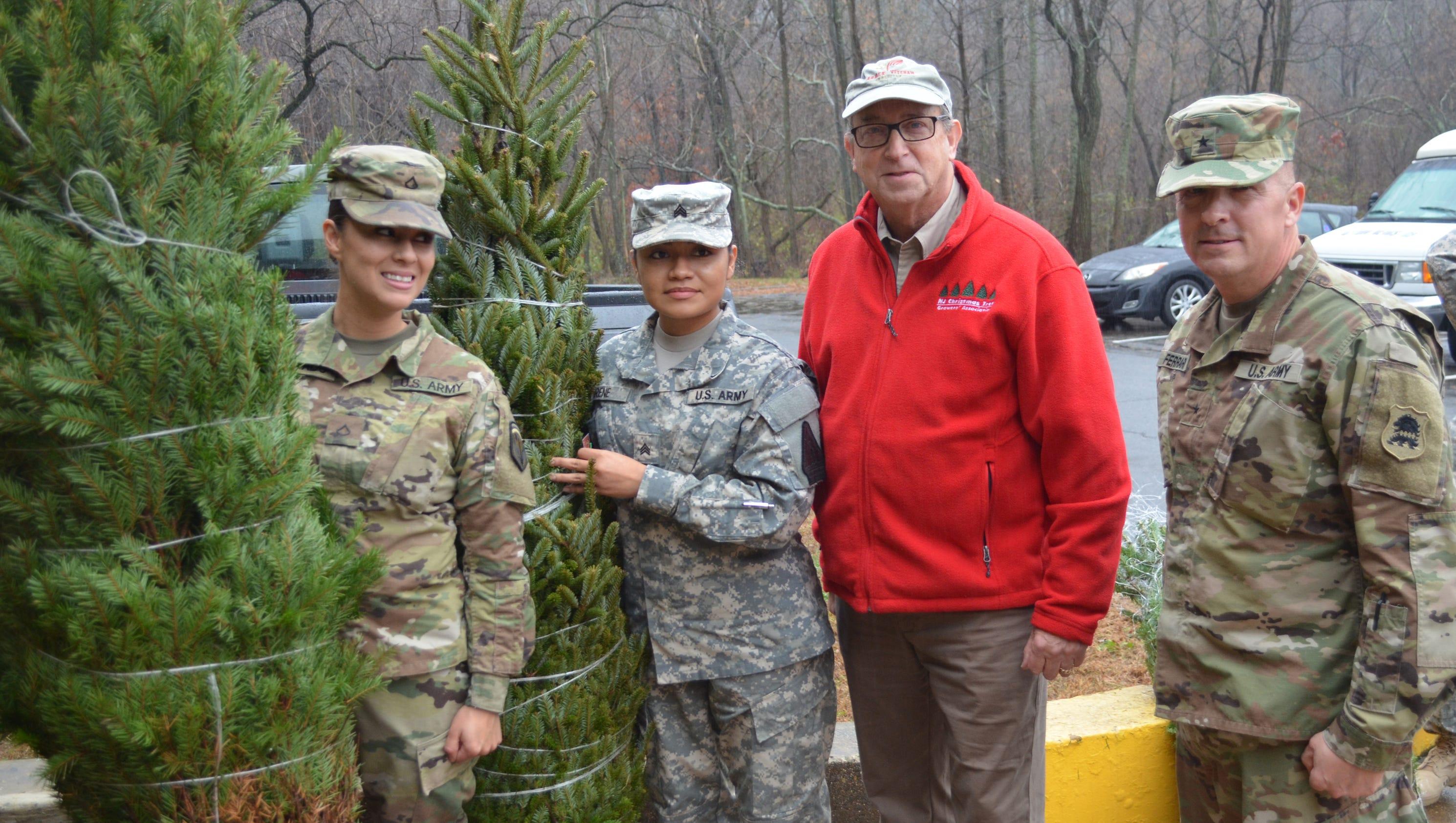 Cut Christmas Trees Nj
