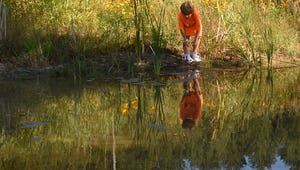 Adorjan Szakala of Baileys Harbor hunts for frogs at Crossroads at Big Creek in Sturgeon Bay.Tina M. Gohr/Door County Advocate