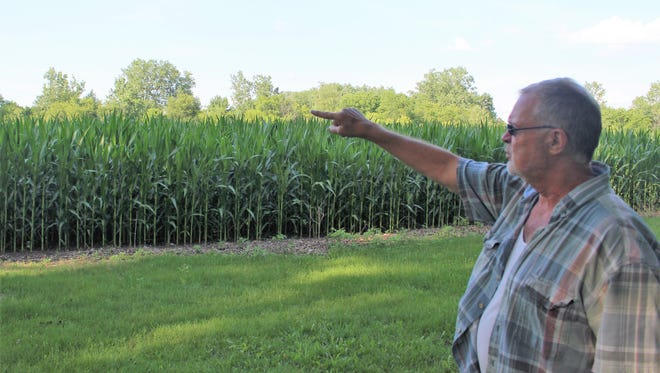 Marion County resident Glenn Maddy points to a treeline on his property on Burris Drive, which he says may be affected if a proposed ditch project is approved by commissioners in July.