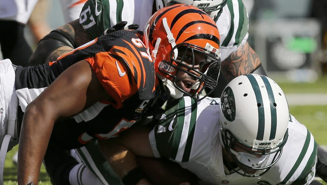 Cincinnati Bengals outside linebacker Vincent Rey stops New York Jets quarterback Ryan Fitzpatrick just short of a touchdown in the fourth quarter. The Bengals held the Jets to a field goal, a big turn in events in the Bengals' one point win.