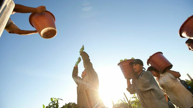 """The documentary """"Food Chains"""" follows a group of Florida farm workers fighting the global supermarket industry and trying to improve working conditions for other farm workers. It appears this week at the Fort Myers Film Festival."""