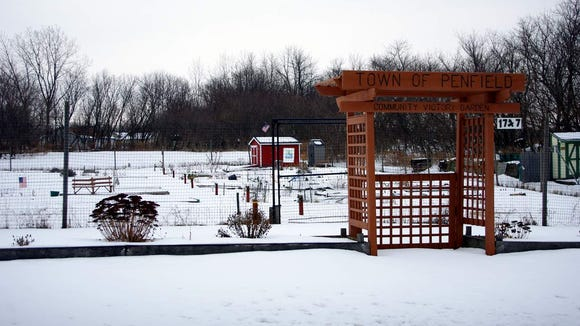 Penfield's community garden, on Five Mile Line Road, is beginning its fifth year. (photo: M. Rosenberry)