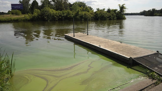 Algae has been causing some problems on Little Rock Lake. This photo is from 2014.
