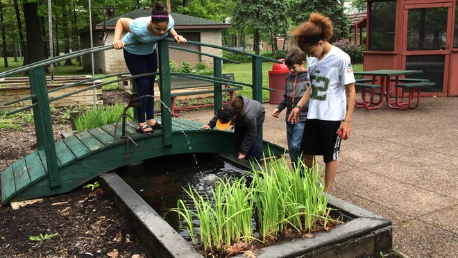 Alliyah Denson, 11, on bridge, Stormie Waters, 8, Aiden Orlowski, 8, and Nakia Keenlance, 12, all of Wisconsin Rapids, look for fish and frogs in a small pond at the Wisconsin Rapids zoo Monday.