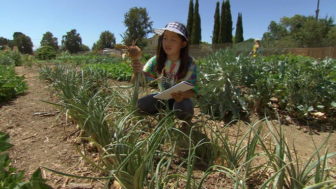 """This undated photo provided by Kikim Media shows a camper at Full Circle Farm in Sunnyvale, Calif., from a scene in the documentary film, """"In Defense of Food,"""" on PBS. The film is based on Michael Pollan's book, """"In Defense of Food,"""" and premieres on PBS on Dec. 30, 2015."""
