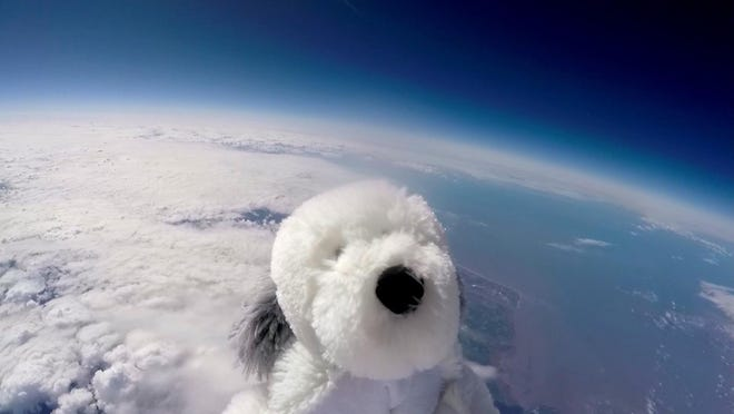 Sam the cuddly toy dog flies high in the sky after taking off from Morecambe, England Tuesday April 5, 2016 attached to a special camera and a helium balloon.