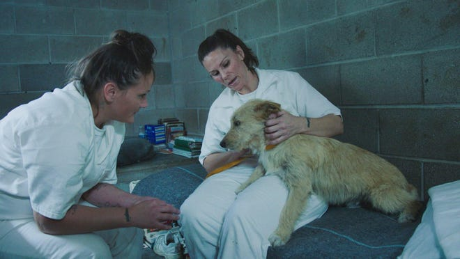"Micah Hubbard, left, Vicky Ratcliff and the Lockhart Texas Correctional Facility are featured in the new TV series ""That Animal Rescue Show."""