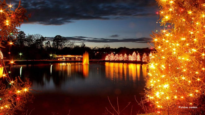 The trees and lights around the lake in McAdenville.