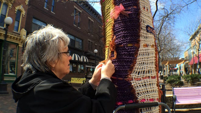 Chris Leech, 67, of Iowa City cuts the stitches of the tree hugger she made with five other members of the knitting group Stitch. Leech was one of many knitters taking down their work during the Unhugging Event at the pedestrian mall Sunday.