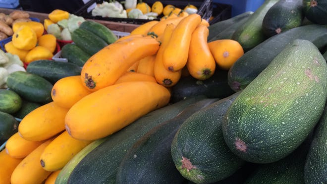 Yellow and green zucchini are fresh and ready for recipes.