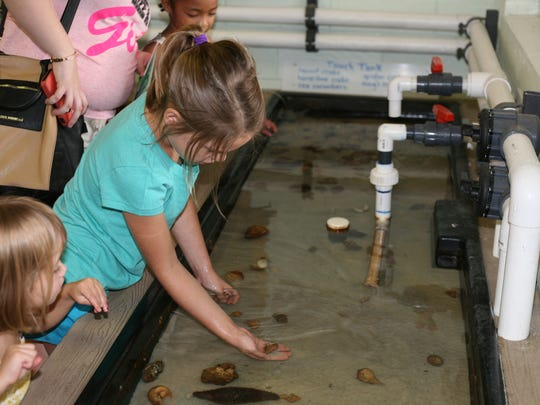 Guests explore the wet lab at a previous Environmental Studies Council Earth Day Celebration.