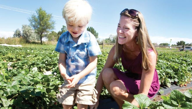 Allison Hines and her son, 3-year-old Aiden Cole Hines, pick strawberries at Garden Sweet Farm in Fort Collins. Spending time gardening is one of their favorite things to do together. Allison lost her own mother to breast cancer in 2008 and was determined that her son would not have to go through the same pain when she was diagnosed with breast cancer five years later.