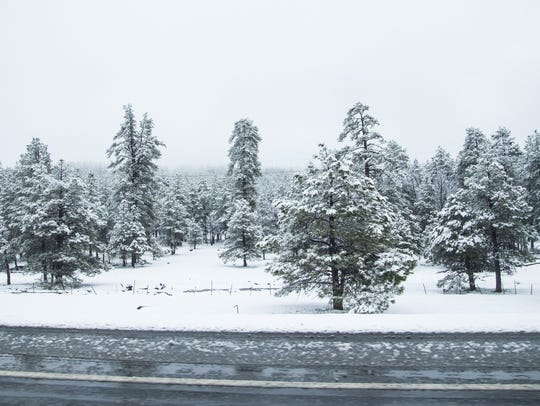 Snowfall and cold weather are expected to hit Flagstaff late Sunday night.
