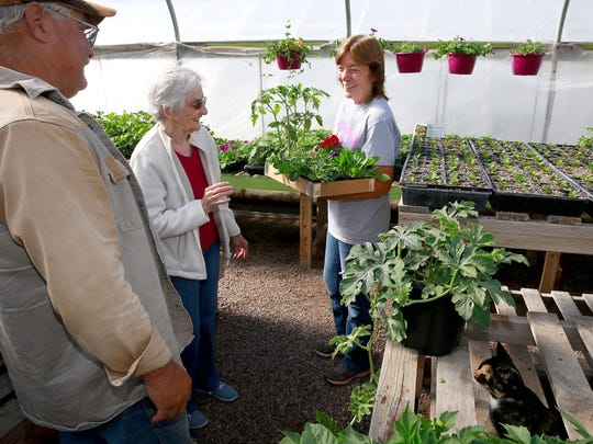 Bonnie Crane, right, helps Lockey Caston and his mom, Inez Caston, pick out some plants on Thursday at the Brewer Greenhouse on Don Rovin Lane in Farmington.