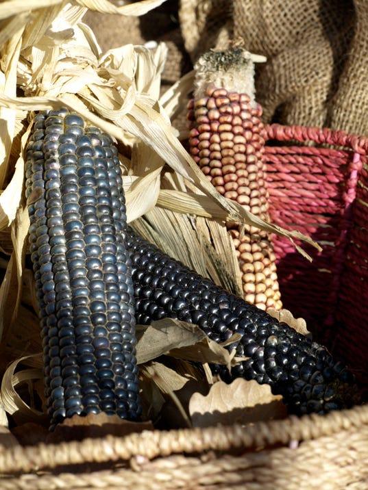 636450536437335364-corn-pretty.jpg