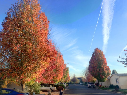 Five minutes of October: Autumn afternoon sights along one Aumsville street.