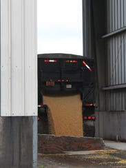 Fox River Valley Ethanol plant grinds and processes