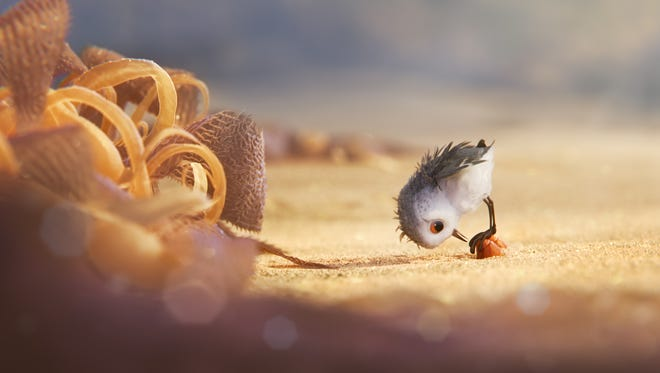 A hungry sandpiper hatchling ventures from her nest for the first time to dig for food by the shoreline in 'Piper,' a new short from Pixar.