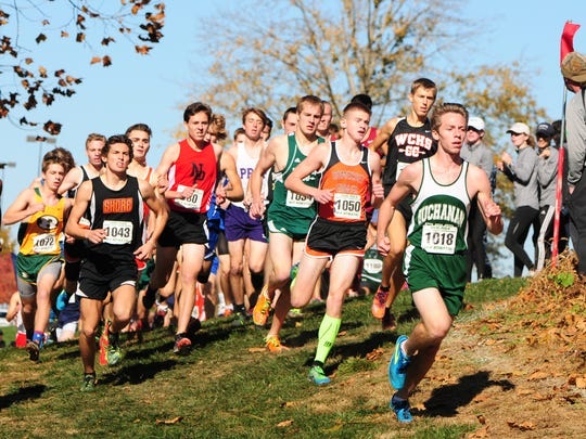 James Buchanan's Dalton Leab leads the pack around a bend in the PIAA Class 2A Cross Country Championships at the Hershey Parkview Course on Saturday, Nov. 5, 2016. Leab finished 52nd in 17:35.