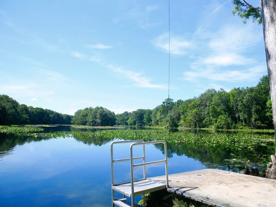 Blueberry Springs sits near the head of the Wacissa River, a 12 mile body of water that feeds into the Aucilla River in Jefferson County.