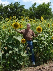 David Johnson stands by plants grown on the inoculated
