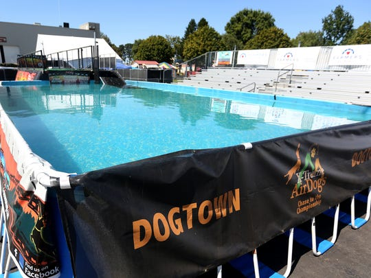 The jumping pool in Dogtown at the Oregon State Fairgrounds on Thursday, Aug. 25, 2016.
