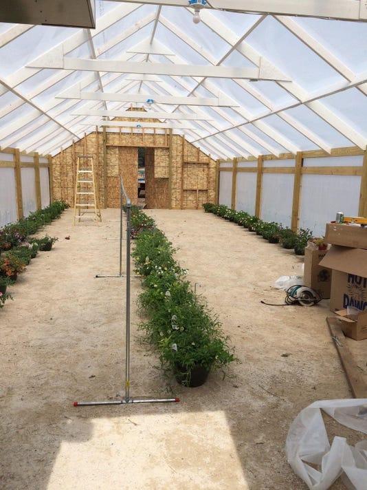 KEW 0429 Kraynik Greenhouse