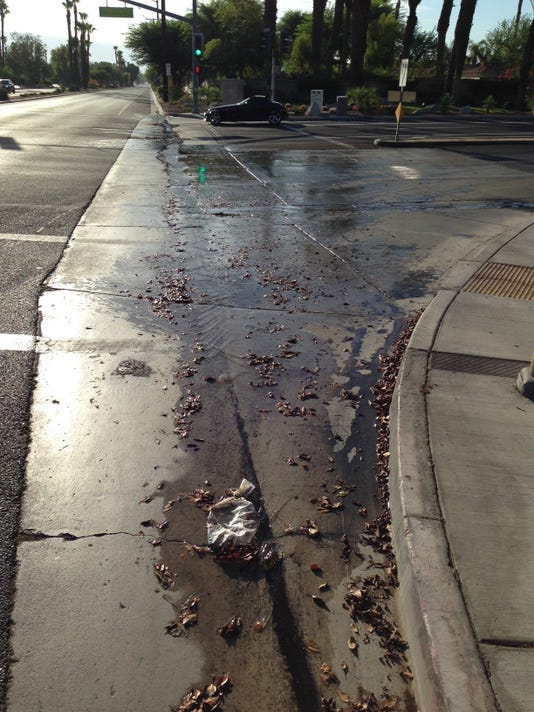Water wasted in Palm Desert..jpg