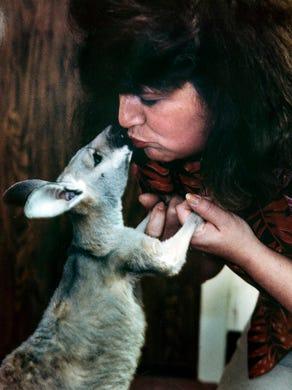 1991 Trooper a baby kangaroo gives kisses to caretaker Lynda Dring at Great Adventure Safari.