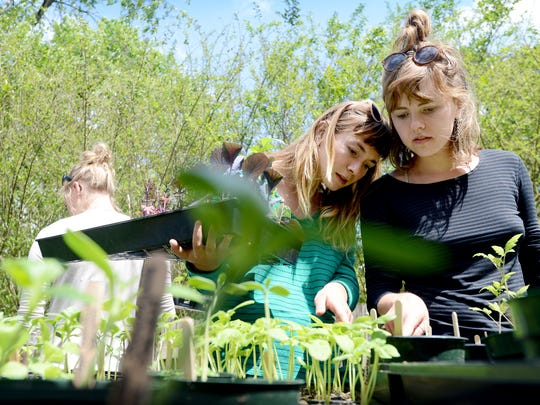 Roommates Kristen Rankin, left, and Melody Crain pick out plants at the Burton Street Peace Gardens summer plant sale on Saturday, April 25, 2015. Rankin is moving soon and plans to start a new garden.