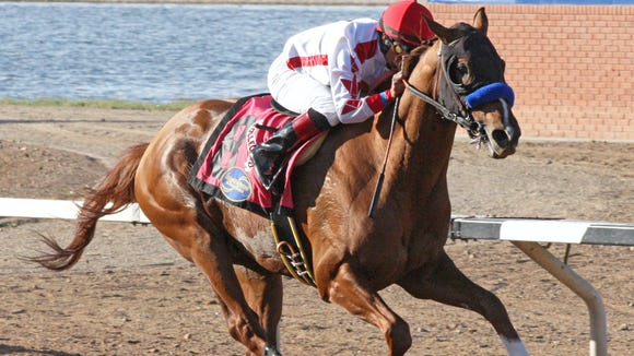 Jockey Martin Garcia and Collected open up on the competition before crossing the wire first in Sunday's $415,000 Festival of Racing Stakes at Sunland Park Racetrack and Casino in Sunland Park.
