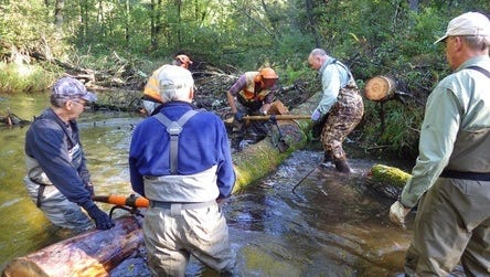 Trout Unlimited (TU) volunteers are active in the management of these projects and work under the direction of the DNR Field Office in Wild Rose Wisconsin