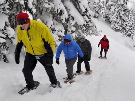 Snowshoers climb a hill on Hurricane Ridge on Jan.