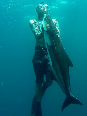 Dalton Connelly, of Fort Pierce, shot this cobia two years ago while free diving the Civic Center artificial reef off St. Lucie County.