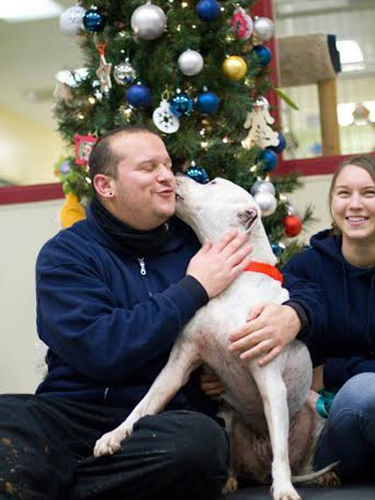 Dog, shelter reunite after 900-mile trip from NYC to Chicago area