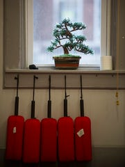 A bonsai tree sits on a windowsill at Meeks Martial