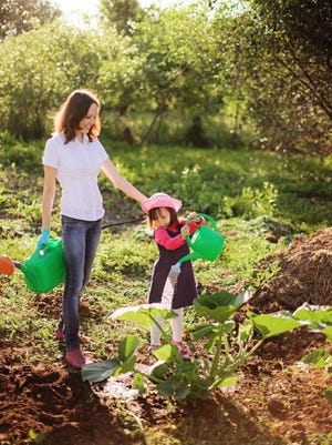 Water wisely for healthy plants