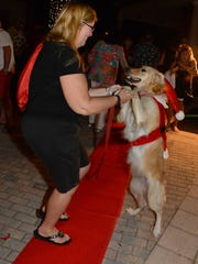 Cindy Wesolowski dances with Sandy, her golden retriever. The Christmas Island Style Canine Christmas Parade filled the Esplanade with dolled up dogs on Tuesday evening.