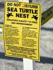 Signage and ribbons warn people away from the egg site of a nesting turtle in Tigertail Beach on Marco Island.