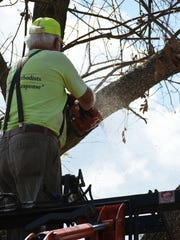 William Pollard is lifted up in a bucket to saw a fallen tree. Two groups of disaster relief volunteers coordinated by the Wesley United Methodist Church on Marco drove down from Tennessee to help residents after Hurricane Irma.