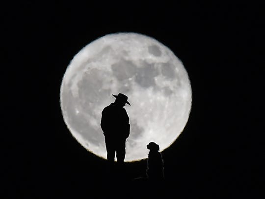 A man stands with his dog on a hill behind Shadow Mountain Sports Complex in Sparks, Nevada as the November Supermoon rises on Nov. 14, 2016.