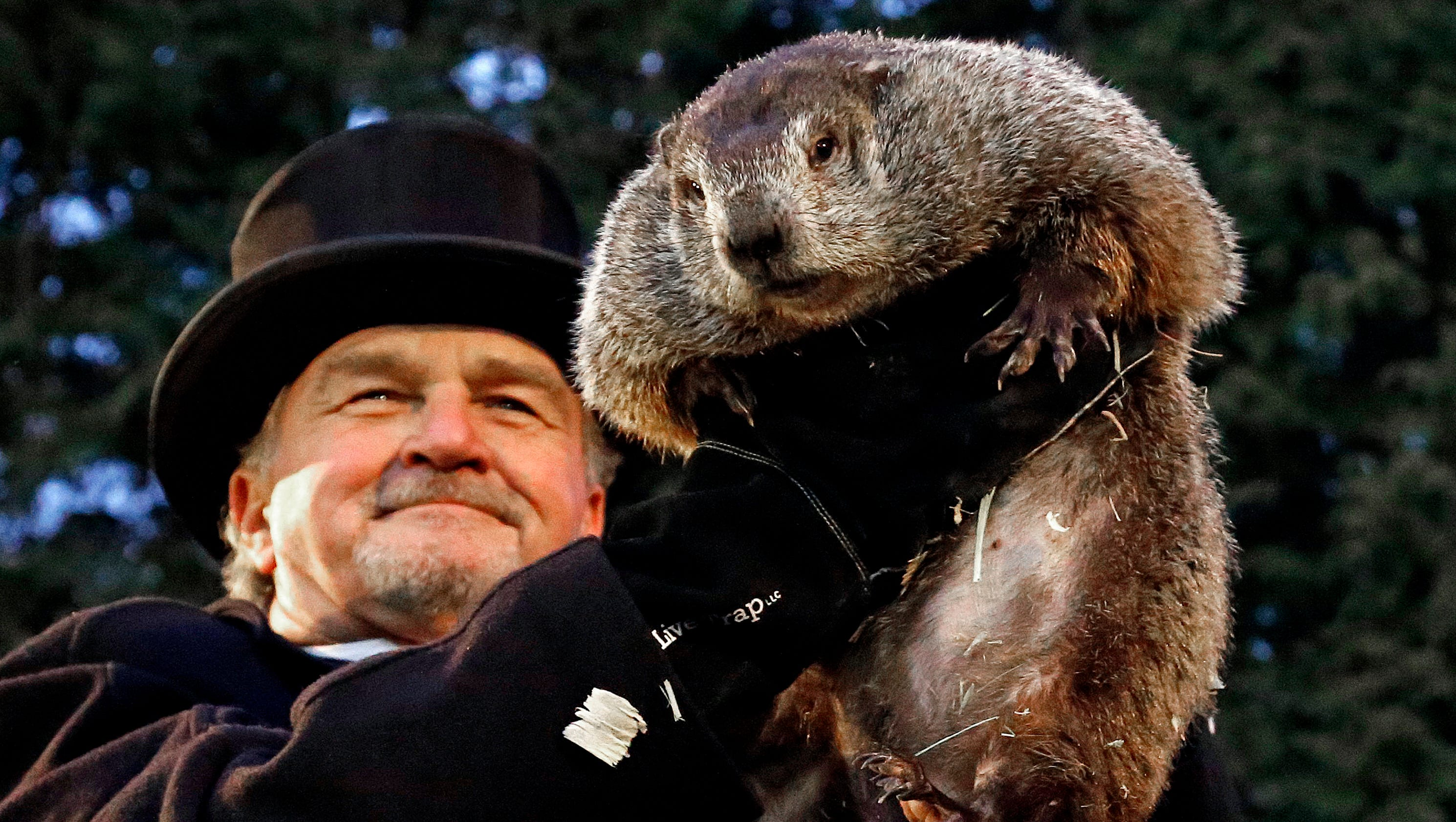 Groundhog Video Today