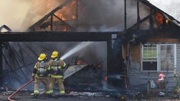 Dogs rescued, home damaged from fire