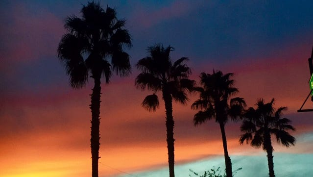 Joann Zimmerman took this photo of palm tree silhouettes against a Phoenix sunset.